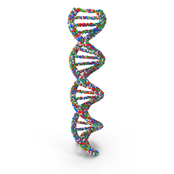 DNA PNG & PSD Images
