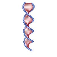 DNA Cartoon PNG & PSD Images