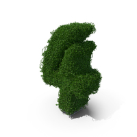 Boxwood Number Four PNG & PSD Images
