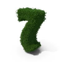 Boxwood Number 7 PNG & PSD Images