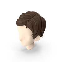 Stylized Hair PNG & PSD Images