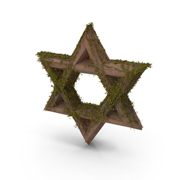 Ancient Stone with Ivy Star of David PNG & PSD Images