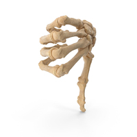 Skeletal Thumbs Down Sign PNG & PSD Images