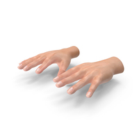 Realistic Hand PNG & PSD Images