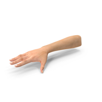 Australoid Female Hand PNG & PSD Images