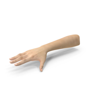 Caucasian Female Hand PNG & PSD Images