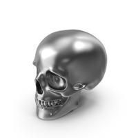 Silver Skull PNG & PSD Images