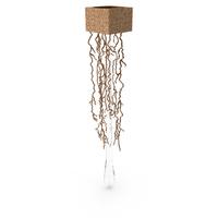 Liquid Wall Lamp Serip PNG & PSD Images