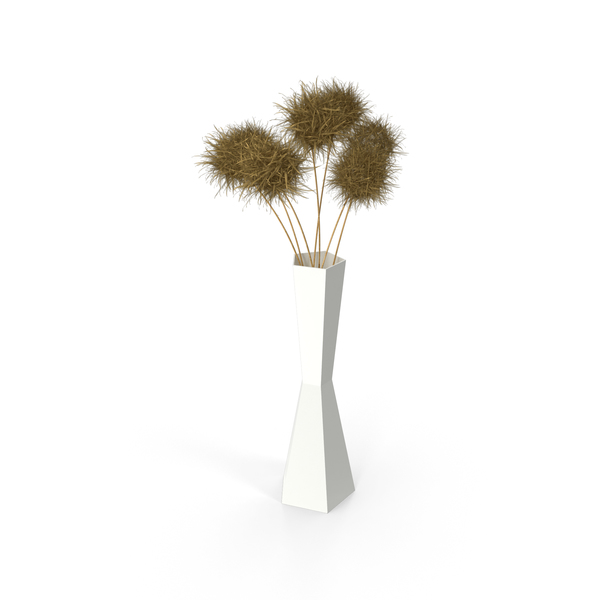 Bouquet of Dried Round Flowers PNG & PSD Images