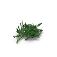 Bunch of Parsley PNG & PSD Images
