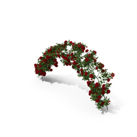 Branch Curly Roses PNG & PSD Images