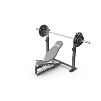 Powertec WB-OB10 Olympic Power Bench PNG & PSD Images