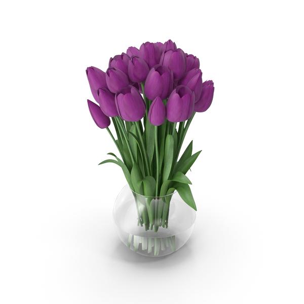 Tulips Violet PNG & PSD Images