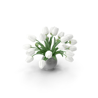 Tulips White Bouquet PNG & PSD Images