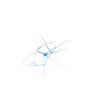 Neuron PNG & PSD Images