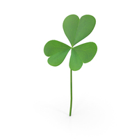 Three Leaf Clover PNG & PSD Images