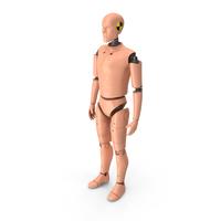 Crash Test Dummy Man PNG & PSD Images