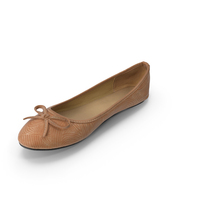 Women Casual Ballerina Shoes PNG & PSD Images