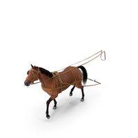 Horse Drawn Leather Single Driving Harness Walking Pose Fur PNG & PSD Images