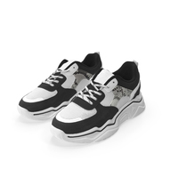 Women Sneakers Pair PNG & PSD Images