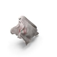 Evil Ghost Bedsheet Flying PNG & PSD Images