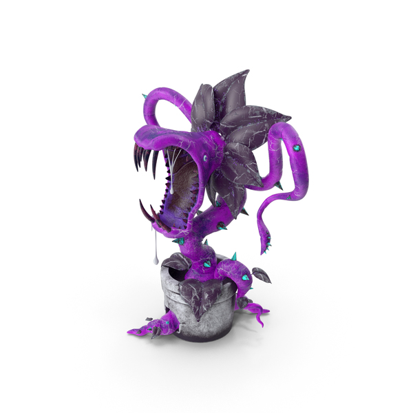 Carnivorous Plant Purple PNG & PSD Images