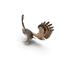 Great Horned Owl Attacking Pose PNG & PSD Images
