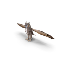 Great Horned Owl T-Pose PNG & PSD Images