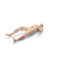 Trauma And Extrication Manikin Lying Pose PNG & PSD Images