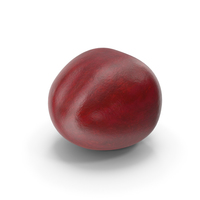 Cherry Fruit PNG & PSD Images