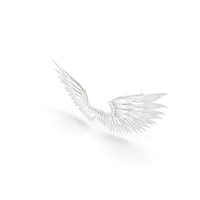 Angel Wings PNG & PSD Images