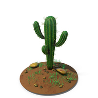 Cactus Single Ground PNG & PSD Images