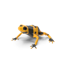 Yellow and Black Dart Frog PNG & PSD Images