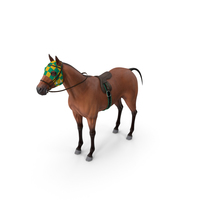 Bay Racehorse PNG & PSD Images