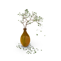Pear Branchlet PNG & PSD Images
