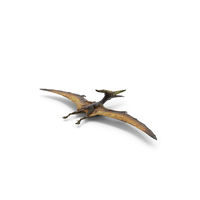 Pteranodon Flying Carnivorous Reptile PNG & PSD Images