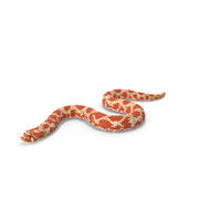 Red Hognose Snake Crawling Pose PNG & PSD Images