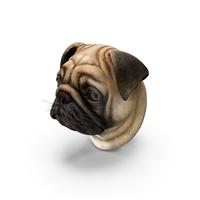 Pug Dog Head PNG & PSD Images