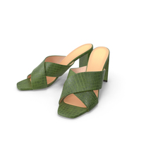 Women's Shoes Mules Green Crocodile Leather PNG & PSD Images