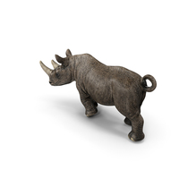 Rhino PNG & PSD Images