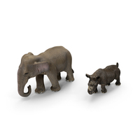 Rhino & Elephant PNG & PSD Images