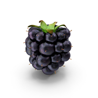Blackberry PNG & PSD Images