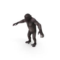 Dark Chimpanzee PNG & PSD Images
