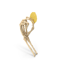 Skeleton Hand holding a Crinkle Cut Wavy Potato Chip PNG & PSD Images