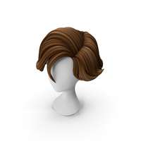 Cartoon Hair (Surfer Style) PNG & PSD Images