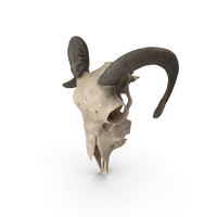 Ram Skull PNG & PSD Images