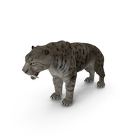 Arctic Saber Tooth Cat with Fur PNG & PSD Images