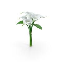 Bouquet Calla Lilies PNG & PSD Images