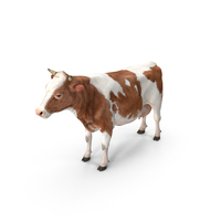 Cow PNG & PSD Images