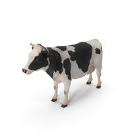 Dairy Cow PNG & PSD Images